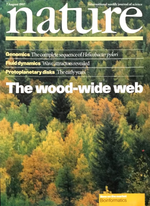 """Cover of the 1997 journal on Nature where the term """"wood wide web"""" was coined in reference to Suzanne Simard's paper"""